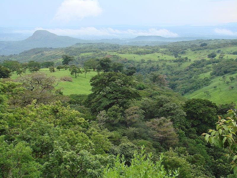 Гуанакасте
